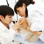 """[1日獣医さん体験コーナーも!]動物とふれあう!動物同伴OKイベント  「2015動物感謝デー in JAPAN """"World Veterinary Day""""」10月3日(土)開催"""
