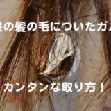 子供の髪の毛についたガムを切らずにとる方法